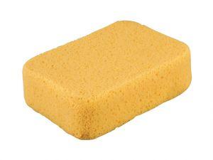 Super Sponge